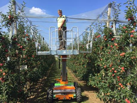 Arbeitsbühnen im Wein- und Obstbau