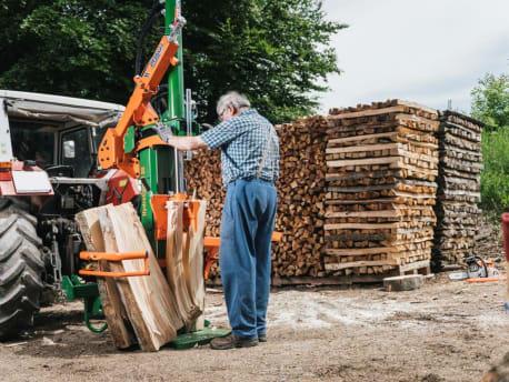 Holzspalter Posch