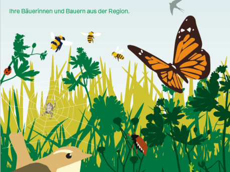 Feldschild zur Biodiversität: Hier tobt das Leben