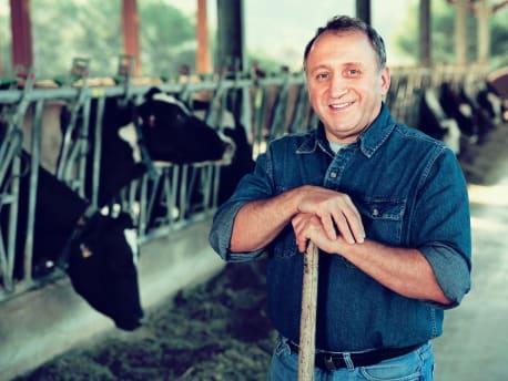 Bauer mit Kühen im Stall