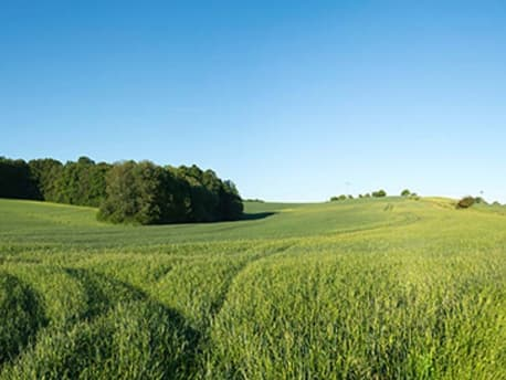 Ökologische Landwirtschaft alles rundum den Öko-Anbau und Tierhaltung