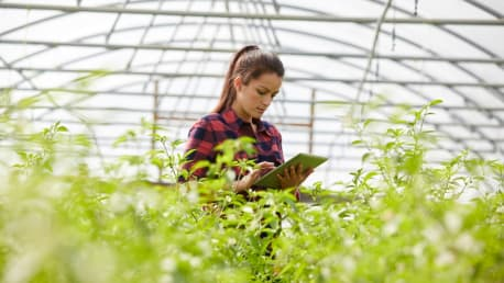 Picture shows a woman with a tablet in a greenhouse
