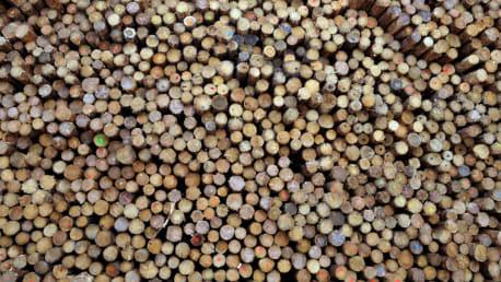 Bild zeigt einen Stapel Holzpellets