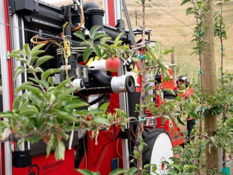 Pflückroboter bei der Ernte