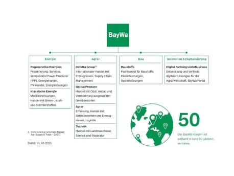 Grafik Unternehmenstruktur BayWa