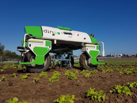 Roboter im Salat