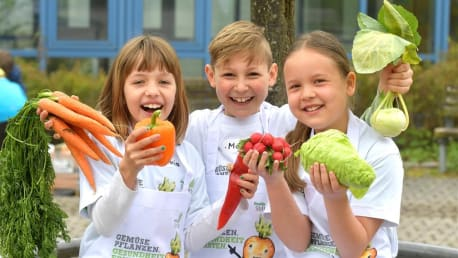 Healthy nutrition for children: planting vegetables. Harvesting health.