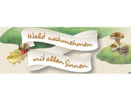 Banner: Wald wahrnehmen mit allen Sinnen