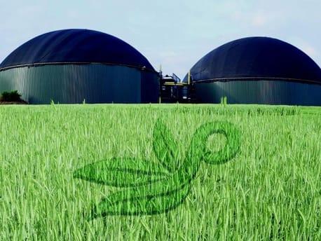 Grünes Feld mit Planterra Logo und Silos im Hintergrund
