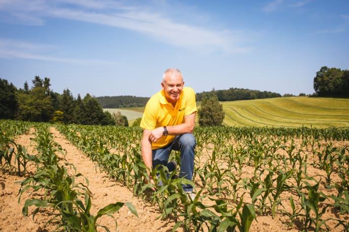 Seppe auf dem Maisfeld