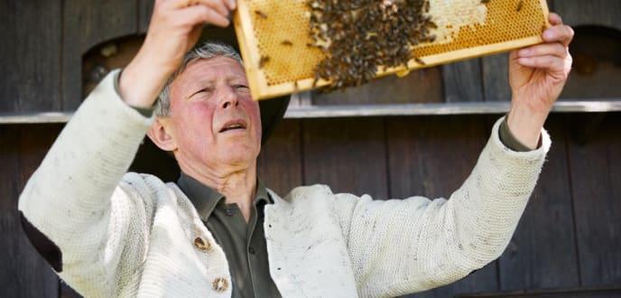 Sebastian Brandl bei der Bienenarbeit