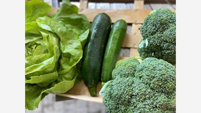 Gemüse grün