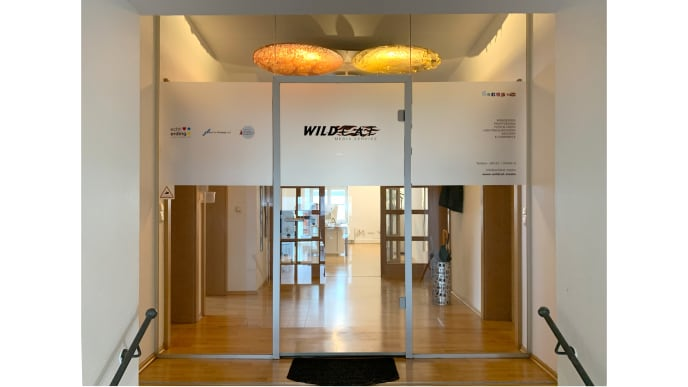 WildCat Media Service
