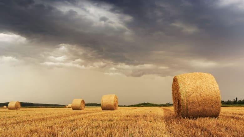 Agrarkunststoffe