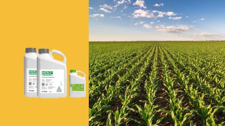 Herbizid im Mais