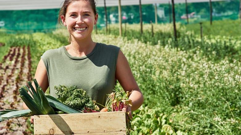Neue Sorten im Gemüsesaatgut