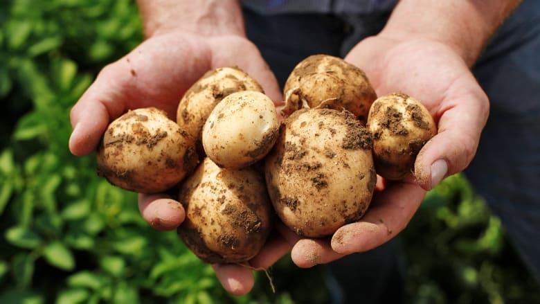Kartoffeltag