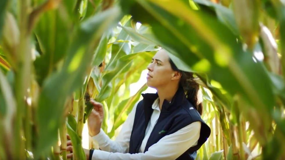 Beizausstattung, Öko-Saatgut und Elektronische Saatgutbehandlung