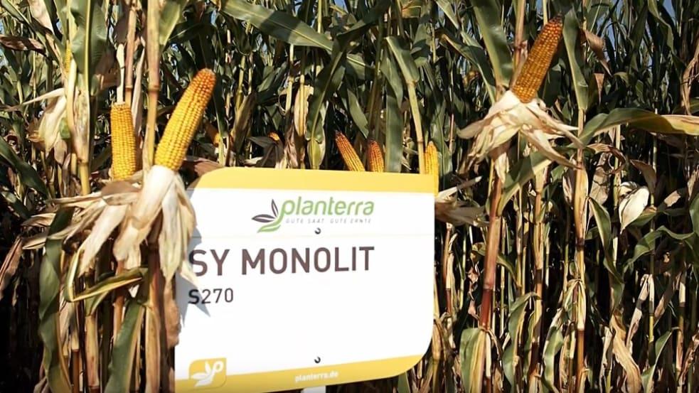 SY Monolit