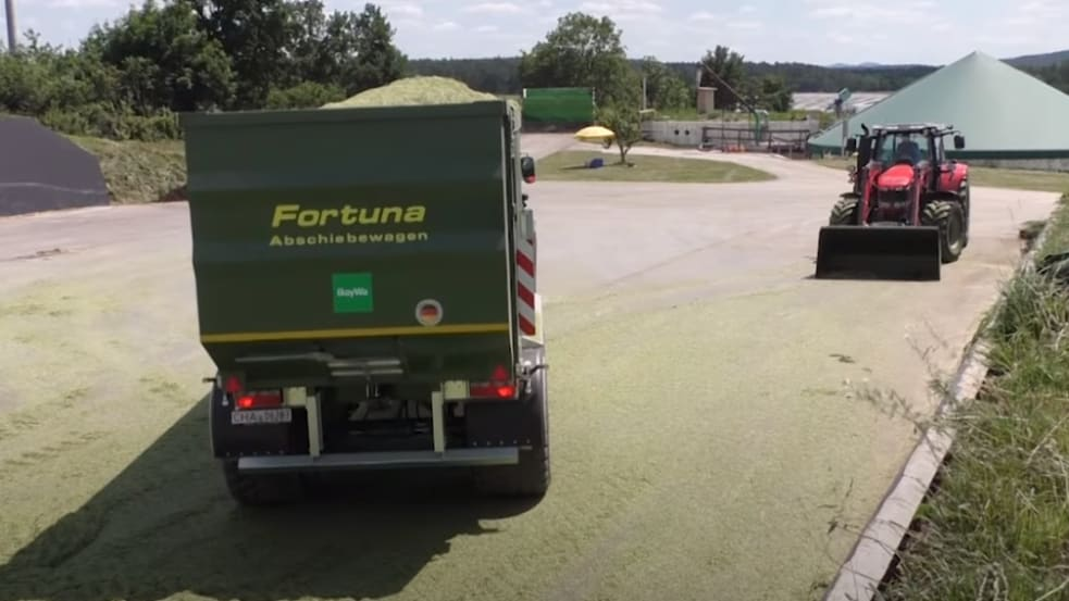 Fortuna Abschiebewagen