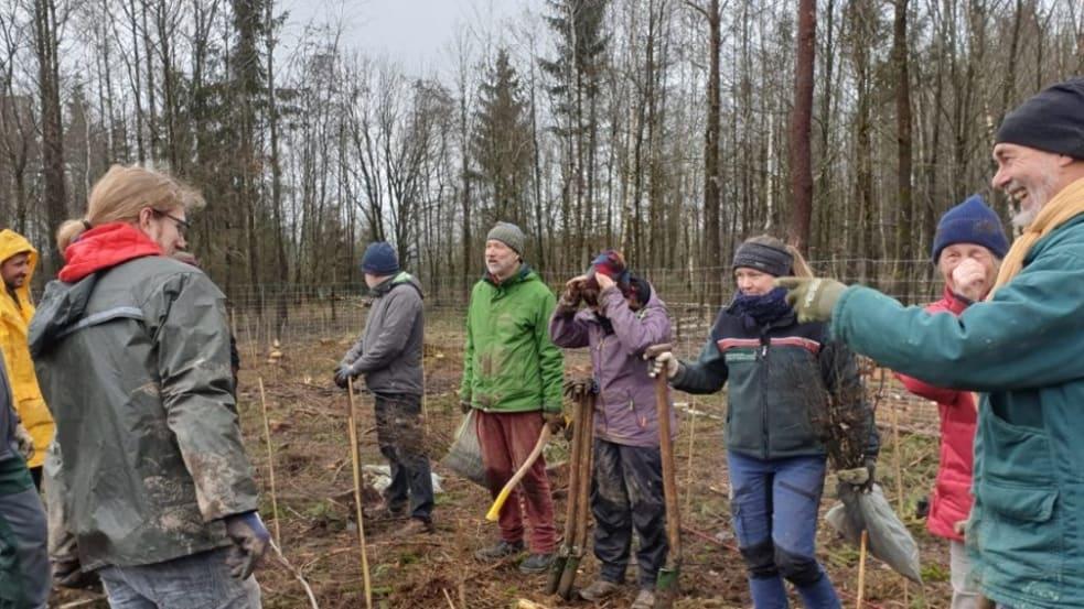 Menschen pflanzen Bäume