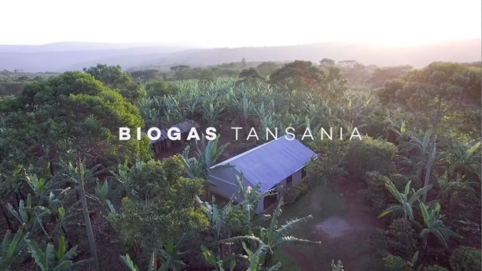 Aid project in Tanzania: Biogas plants for clean cooking energy
