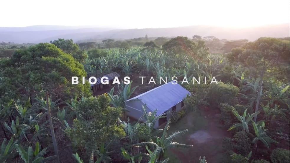 Hilfsprojekt in Tansania: Biogasanlagen für saubere Kochenergie