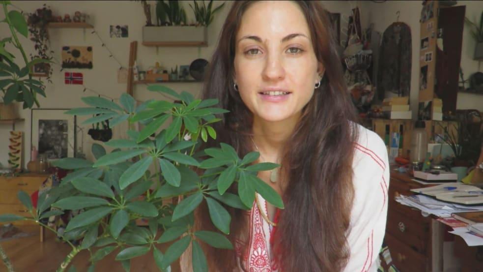 Sara Hiller
