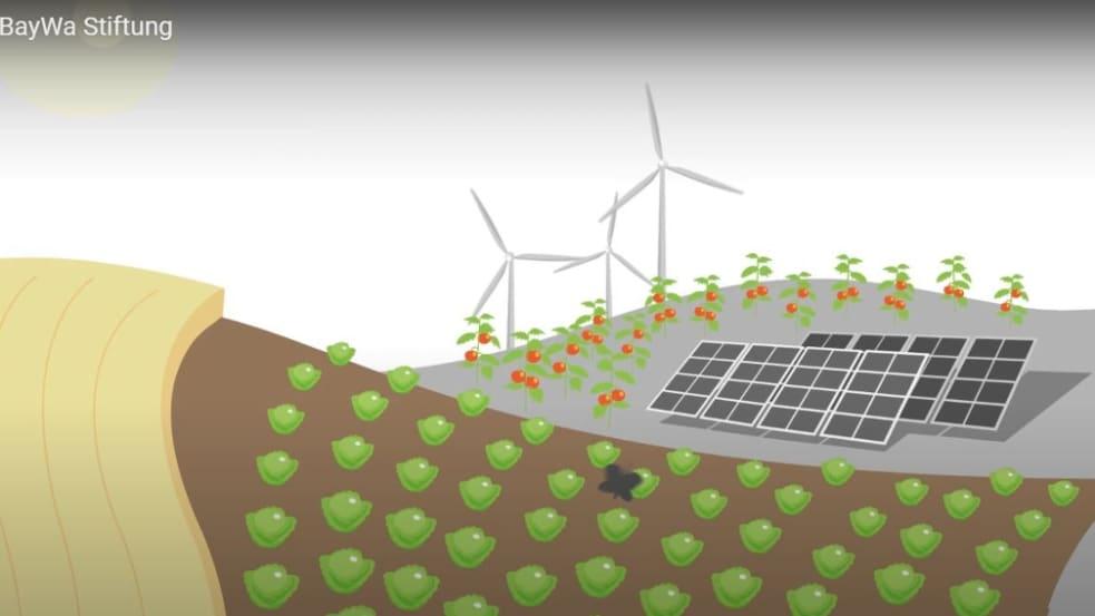Die BayWa Stiftung fördert Bildungsprojekte für gesunde Ernährung und erneuerbare Energie.