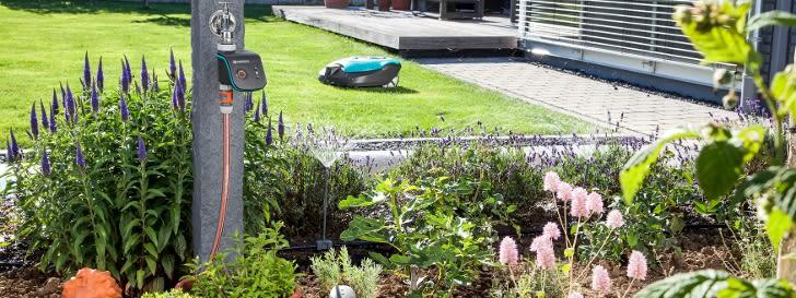 Gartenkalender: Mai