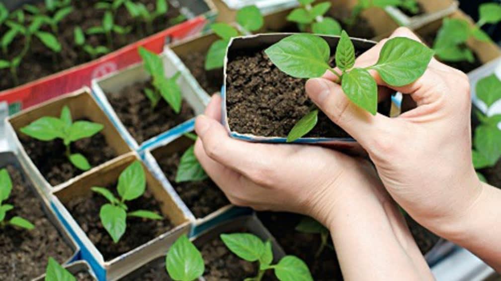 Bewässerung ist aktiver Umweltschutz!