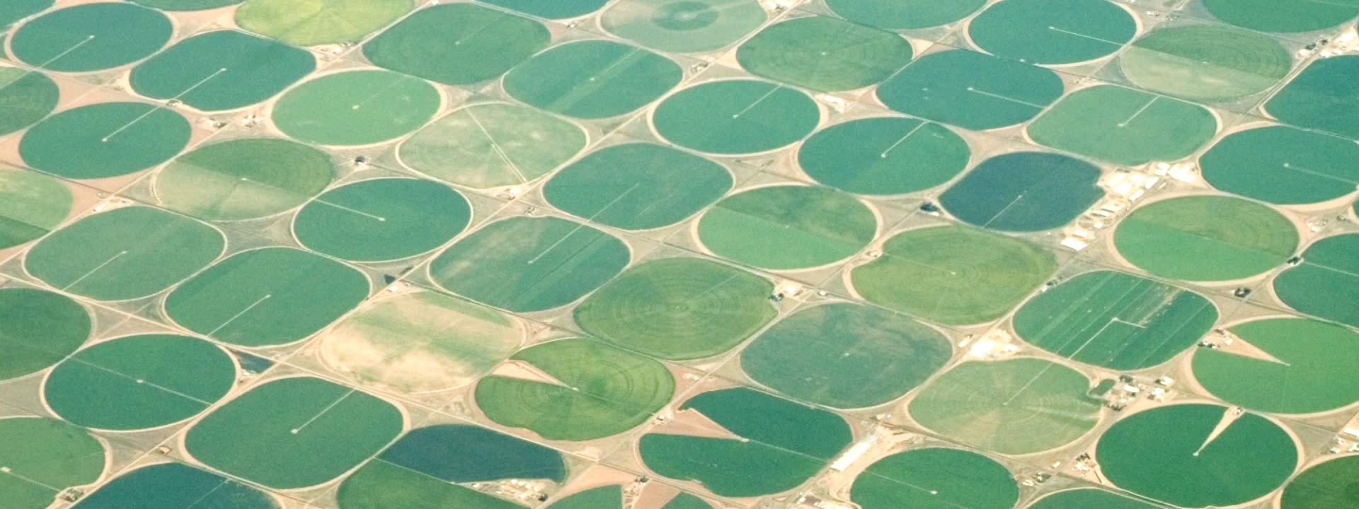 Bewässerung mit Satellitendaten