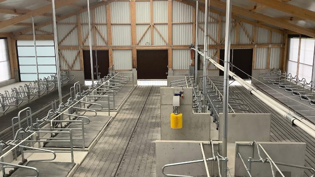Bau als 4-Reiher erleichtert den gelenkten Kuhverkehr