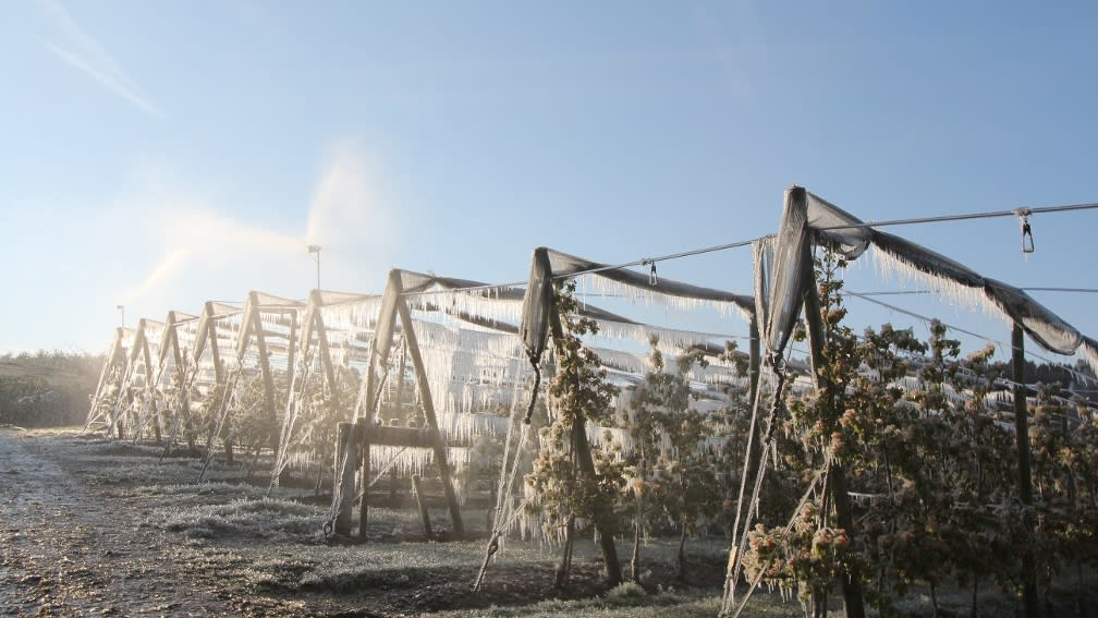 Beregnung Frostschutz