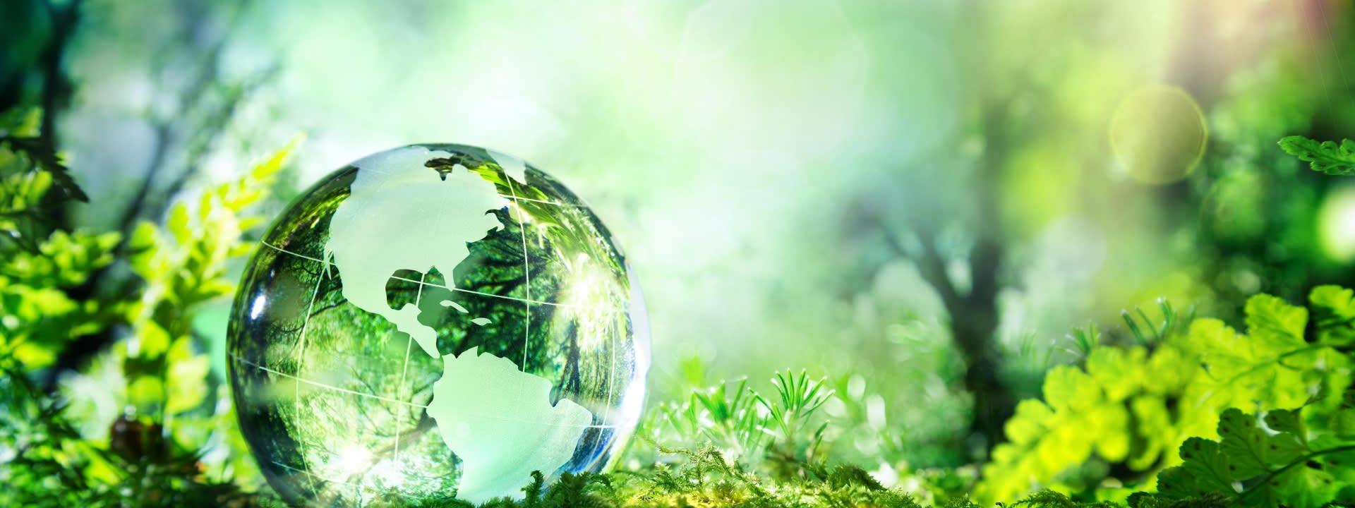 Umweltbewusst