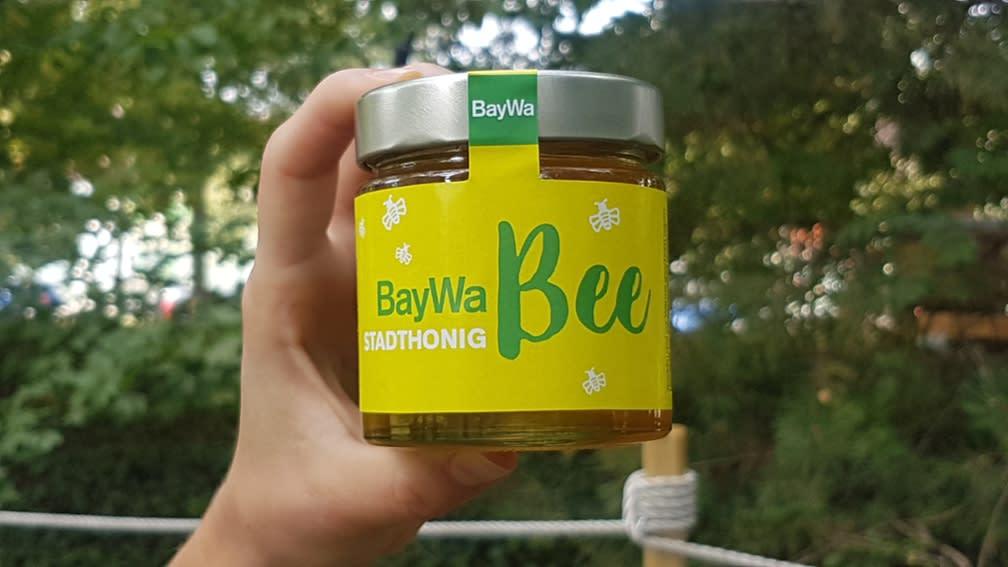 BayWa Honig