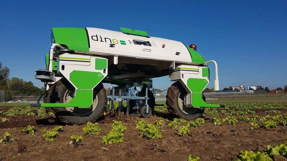 Roboter DINO im Salat