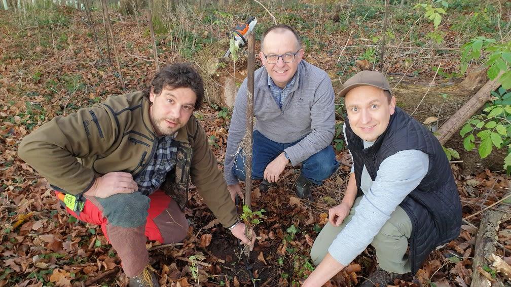 Drei Männer im Wald