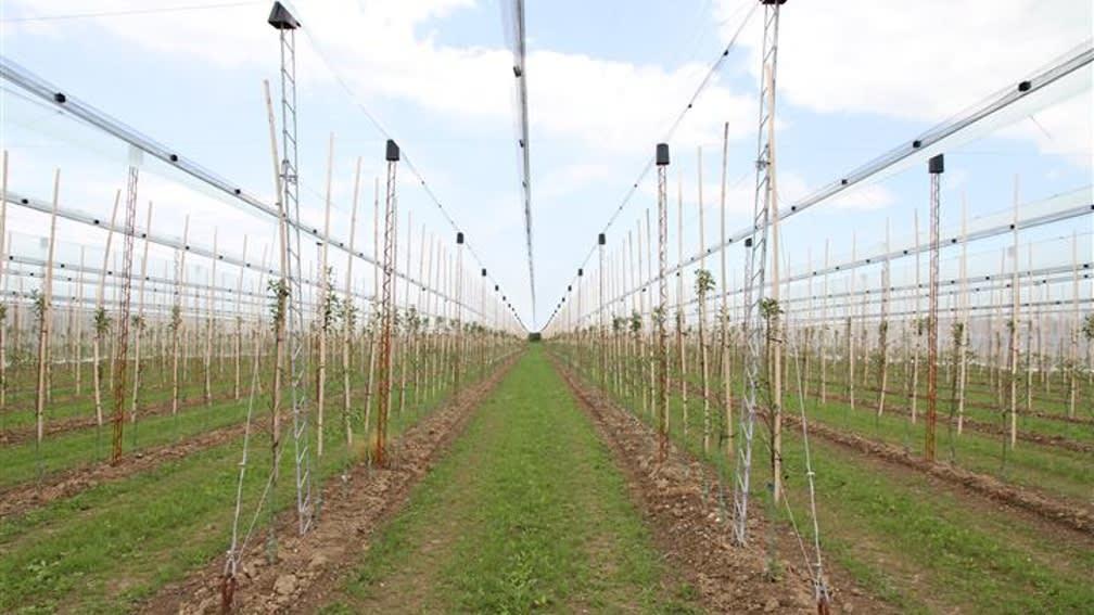 Hagelschutz-Unterkonstruktion basiert auf trapezförmigen Gitterträgern