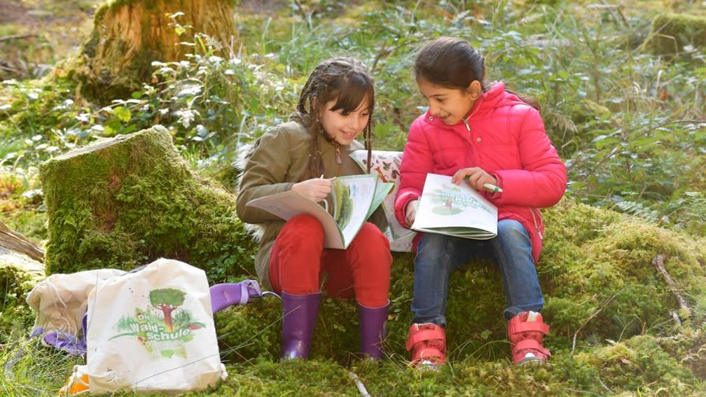 In the forest diary of the BayWa Foundation the children deepen their knowledge of the forest from the action day.