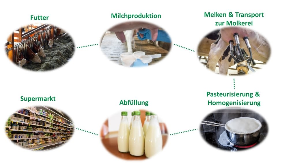 Produktion Milch