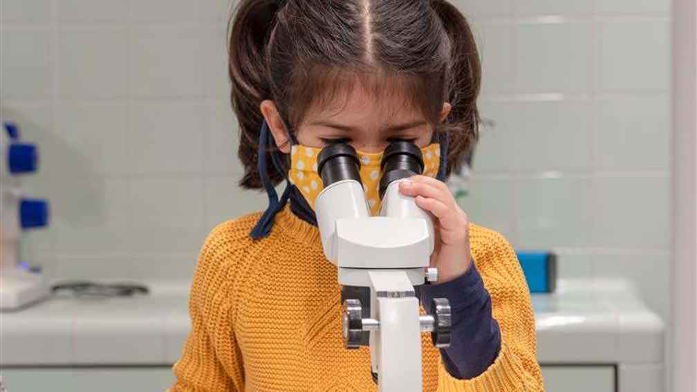 Mikroskopieren und Erforschen