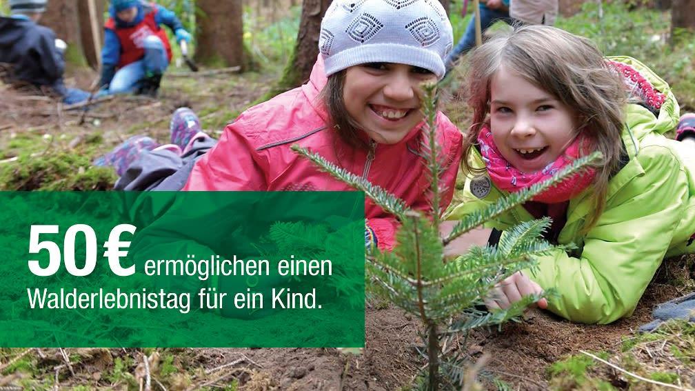 50 € ermöglichen einen Walderlebnistag für ein Kind