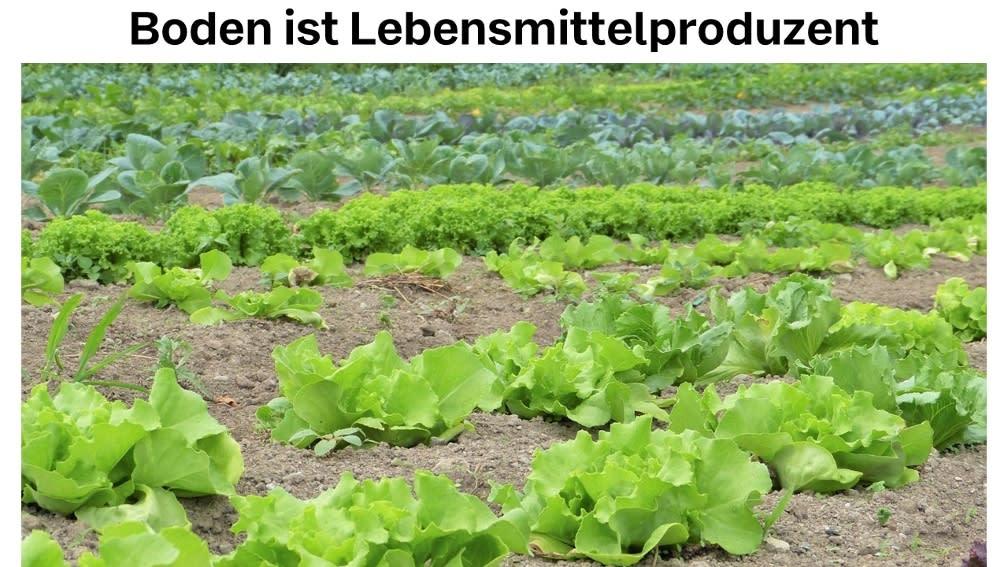 Boden ist Lebensmittelproduzent