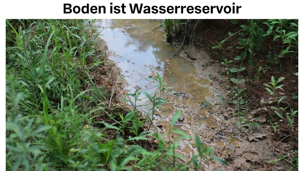 Boden ist Wasserreservoir