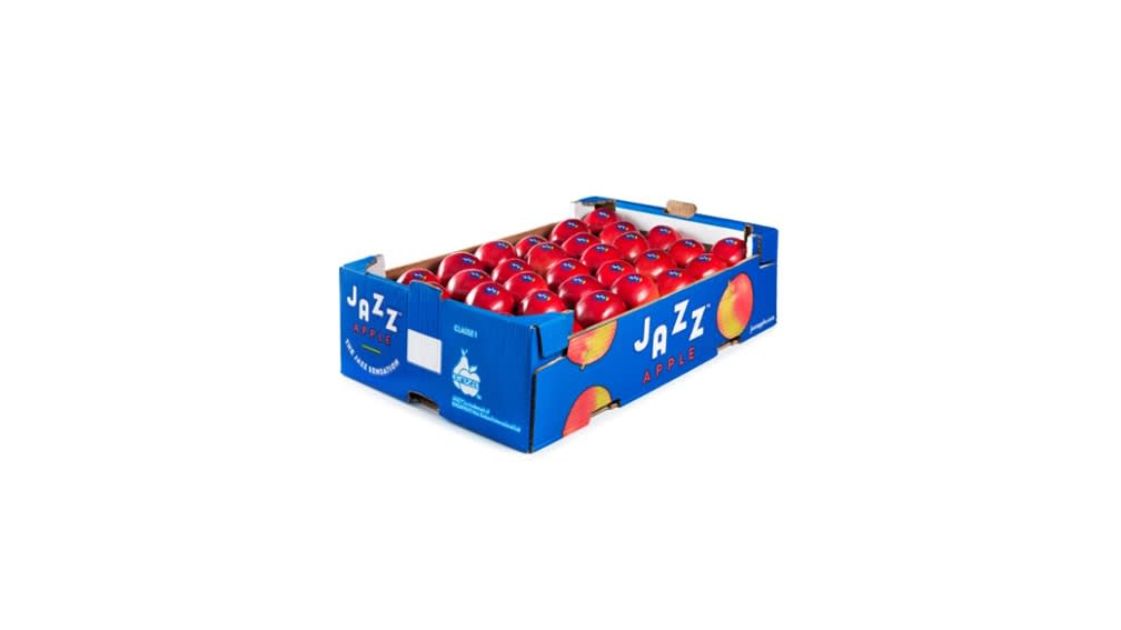 60 x 40 retail display tray (open top double layer)