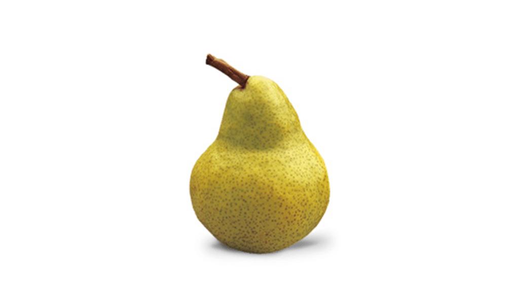 Beurré Bosc Pear