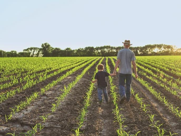 Landwirtschaftsportal