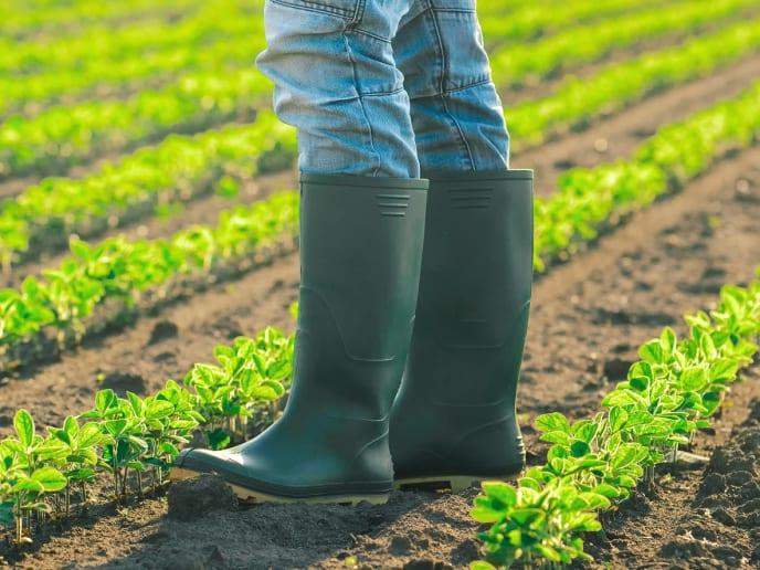 Landwirt auf Feld