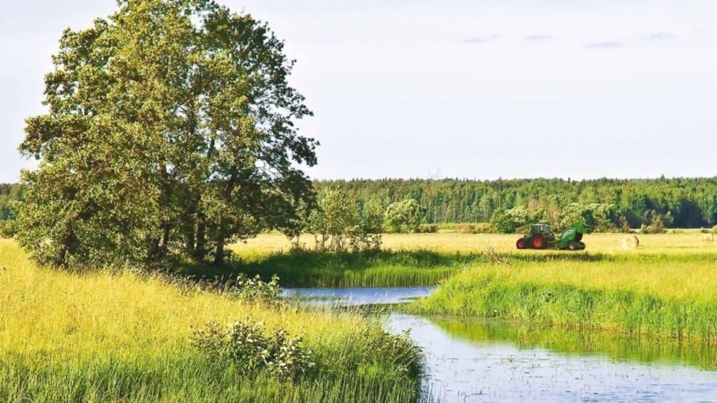 Umweltschonende Schmier- und Sonderkraftstoffe